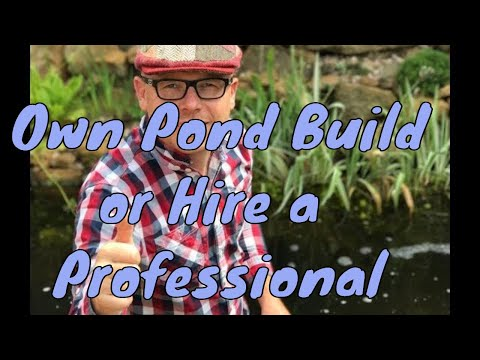 Should I build my own pond or hire a professional