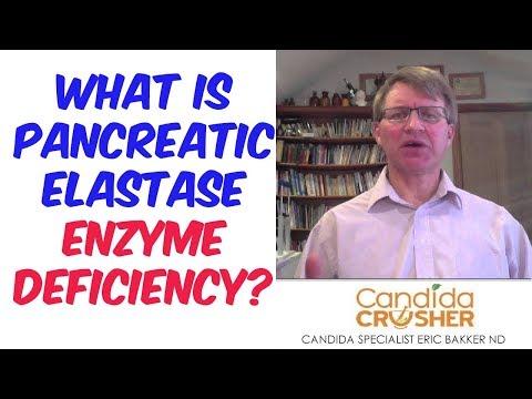 What Is Pancreatic Elastase Enzyme Deficiency?