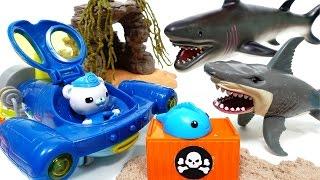 Mutant Shark Alert~! Go Octonauts Gup Q, Rescue Sea Creatures
