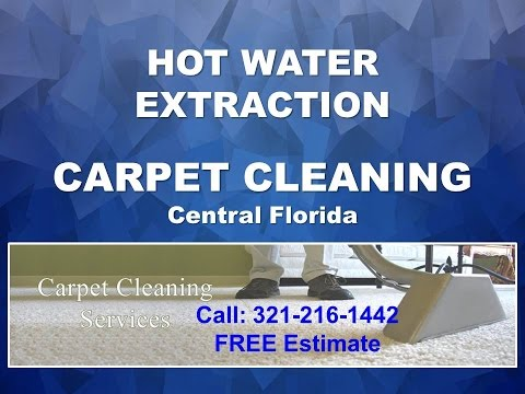Best Clarcona Carpet Cleaning Services 321-216-1442