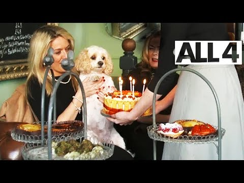 Dog Owner Spends £500-£600 on Her Dog's Birthday Party | Posh Dogs