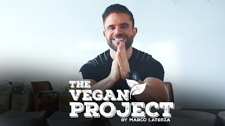 VLOG CLARIFICATION VEGAN PROJECT | BY MARCO LATERZA