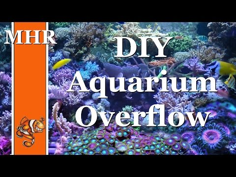 HOW TO: Build an Aquarium Overflow