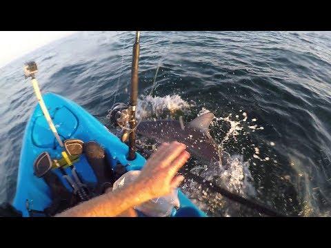 Shark Kayak Fishing Sleigh Ride. Montauk NY.