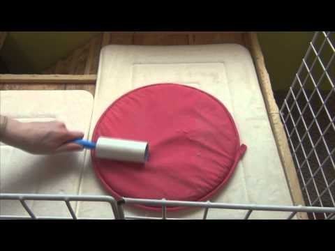 How I Clean My Rabbit's Cage