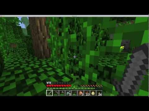 MineCraft 1.2 Finding an Ocelot