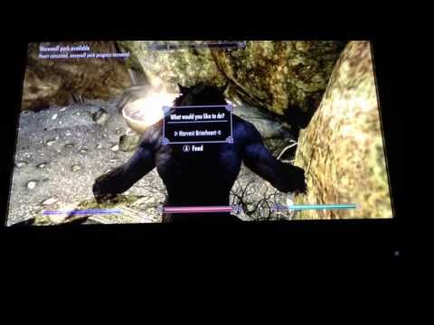 Werewolf on Skyrim