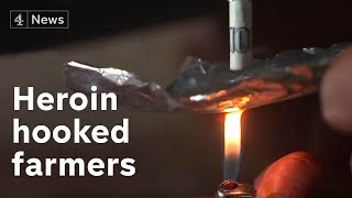 The Punjabi farmers hooked on heroin