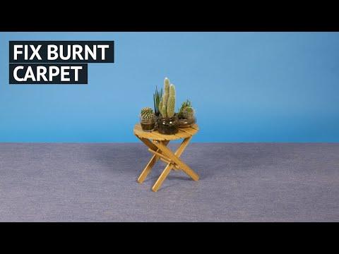 Fix burnt carpet