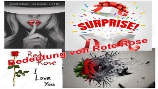 Bedeutung von rote Rose