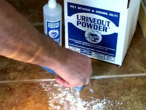 Clean Dog Urine from Tile - Video 2