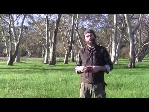2016 Vermeer SherrillTree Australian Arborist Seminar Series - Introduction by Joe Harris