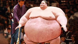 12 Things That You Don't Know About Sumo Fighters