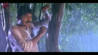 Jallu Ammo Jallu Video Song || Papakosam  Movie  || Rajasekhar, Shobana, Shamili ||MovieTimeCinema