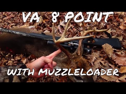 Virginia 8 Point Buck Muzzleloader Hunt