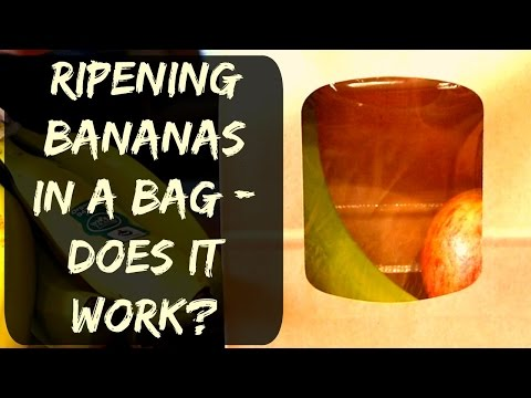 How To Ripen Bananas In A Paper Bag - Does it Work?
