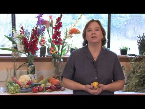 Gardening Lessons : Facts About Lemon Trees