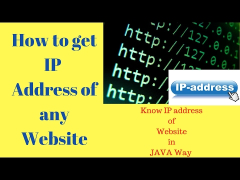 How To Get any Website IP Address in Java