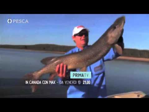 Pesca Tv - Sky 235 - PROMO IN CANADA CON MAX
