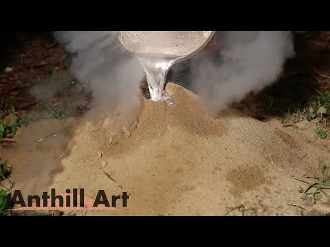 Five Fire Ant Colony Casting Session Part 2: Cast 3