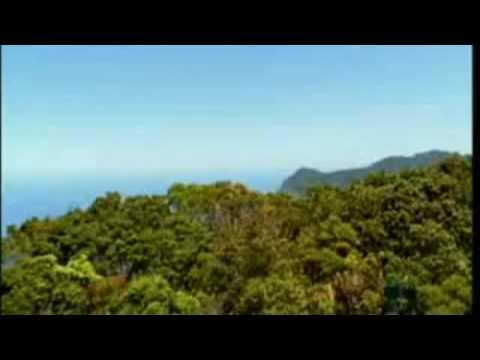 Perfect Flights   Australia Tourism   Cheap Flights to Australia