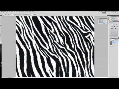CAFD II  Zebra Print Fabric repeat
