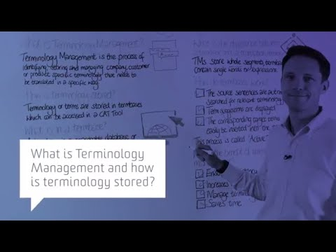 What is Terminology Management and how is terminology stored?