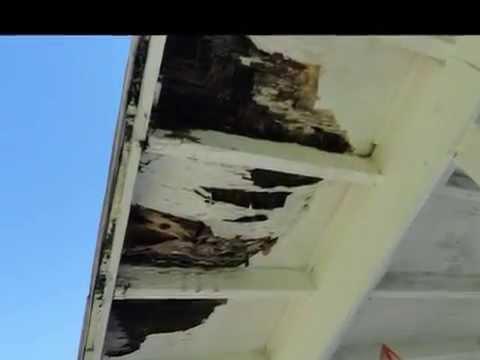 repair porch roof