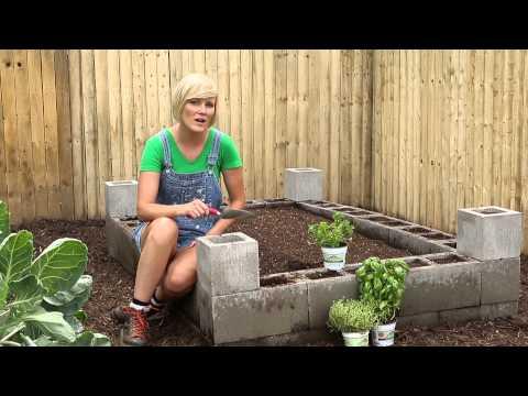 Cement Block Raised Bed - Burpee Garden Projects