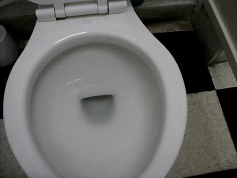 Syphonic Armitage Shanks flushing tissue paper