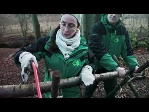 How to build a sawhorse - Branching Out assistant leader training video