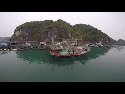 Travelling in Vietnam: from Ho Chi Minh to Hanoi