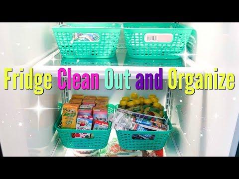Fridge Clean Out & Organize/Dollar Tree Organization/Tips Tricks & Hacks To Maintain a Clean Fridge