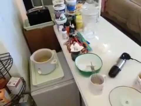 Making Lotion out of Oil, Beeswax, Borax and Colloidal Silver.