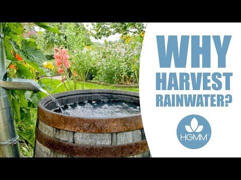 Why Harvest Rainwater?