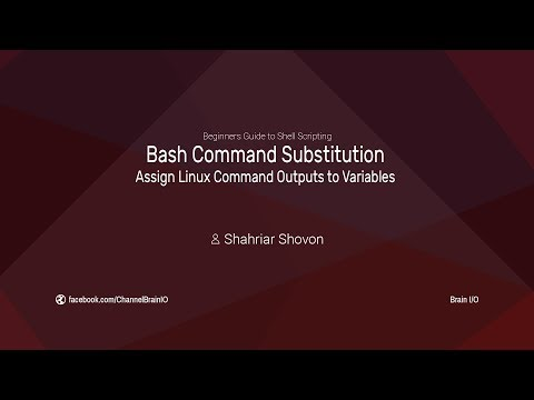10. Bash Command Substitution - Assign Linux Command Outputs to Variables