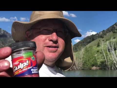 Fishing Porcupine for Kokanee salmon