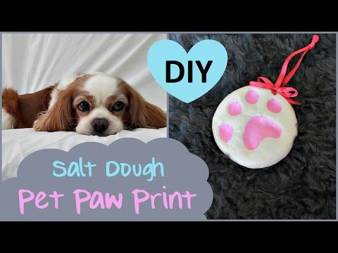 DIY Pet Paw Print | SALT DOUGH
