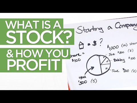 What is a Stock & How YOU Make Money in the Market