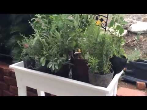 Julie Tourangeau And Her Beautiful Gro-Matic Deck And Patio Planters!
