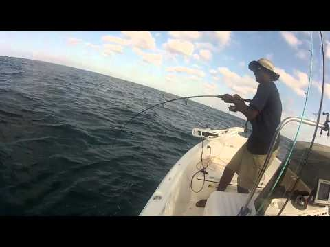 Fishing for Bonita in Clearwater, FL