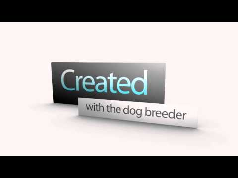 Dog Runs, Kennels Ireland, Dog Runs Dublin - Bargains!