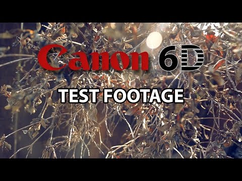 Canon 6D Test Footage- Backyard Session