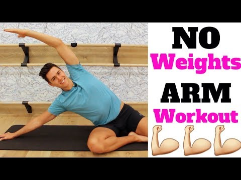 Arm Workout NO WEIGHTS | Song Challenge