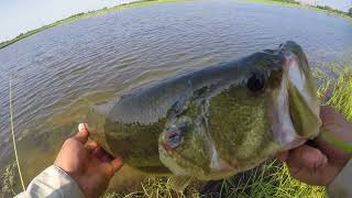 East Texas Fishing (quinlan)