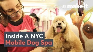 What It Takes To Run A Dog Grooming Business In NYC
