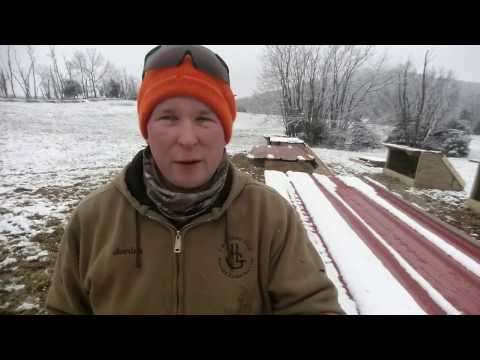 New style winter farrowing shelters