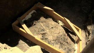 Roma, mobilio e scheletro di cane del III secolo in scavi metro C