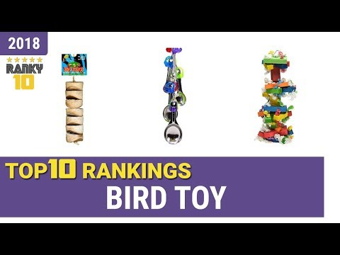 Best Bird Toy Top 10 Rankings, Review 2018 & Buying Guide