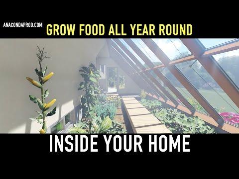 Greenhouse of abundance   - Official Trailer-  Short